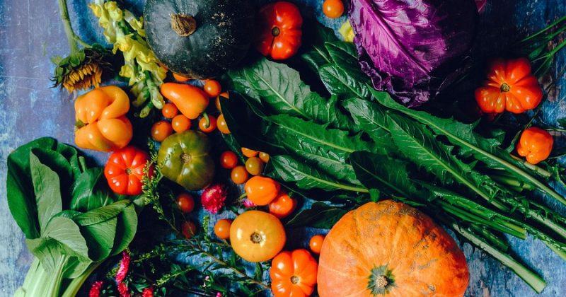 Homocysteina i kolejny argument za roślinnym odżywianiem